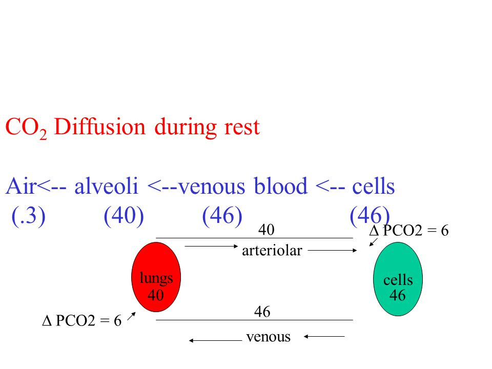 CO 2 Diffusion during rest Air<-- alveoli <--venous blood <-- cells (.3) (40)(46) (46) lungs venous arteriolar cells 40 46 PCO2 = 6