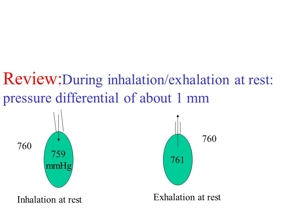 Review: During inhalation/exhalation at rest: pressure differential of about 1 mm 759 mmHg 760 Inhalation at rest 761 760 Exhalation at rest