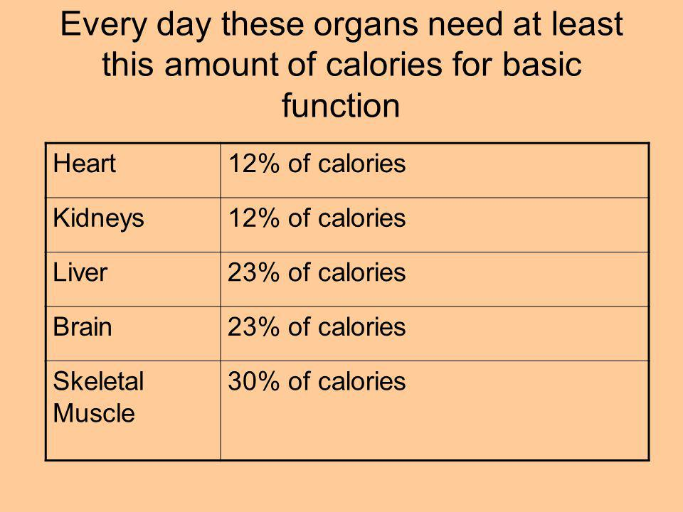 Every day these organs need at least this amount of calories for basic function Heart12% of calories Kidneys12% of calories Liver23% of calories Brain23% of calories Skeletal Muscle 30% of calories