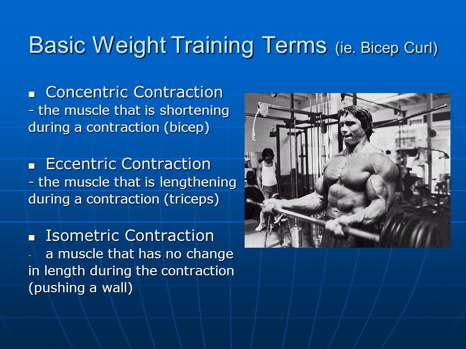 Basic Weight Training Terms (ie. Bicep Curl) Concentric Contraction Concentric Contraction - the muscle that is shortening during a contraction (bicep