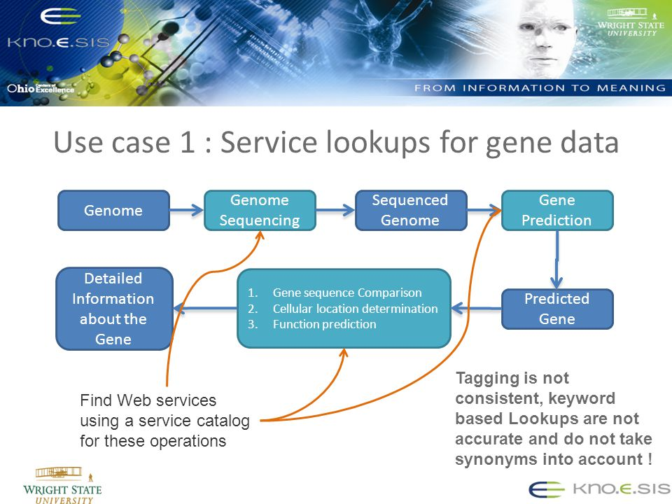 Use case 1 : Service lookups for gene data Genome Sequencing Sequenced Genome Gene Prediction Predicted Gene 1.Gene sequence Comparison 2.Cellular location determination 3.Function prediction Detailed Information about the Gene Find Web services using a service catalog for these operations Tagging is not consistent, keyword based Lookups are not accurate and do not take synonyms into account !