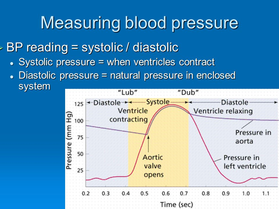 Measuring blood pressure BP reading = systolic / diastolic BP reading = systolic / diastolic Systolic pressure = when ventricles contract Systolic pressure = when ventricles contract Diastolic pressure = natural pressure in enclosed system Diastolic pressure = natural pressure in enclosed system