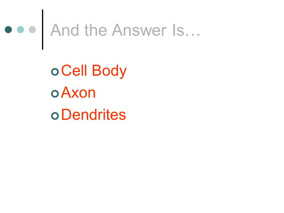 QUESTION What does a Cell Body do?