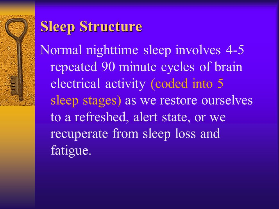 Sleep Structure Normal nighttime sleep involves 4-5 repeated 90 minute cycles of brain electrical activity (coded into 5 sleep stages) as we restore ourselves to a refreshed, alert state, or we recuperate from sleep loss and fatigue.