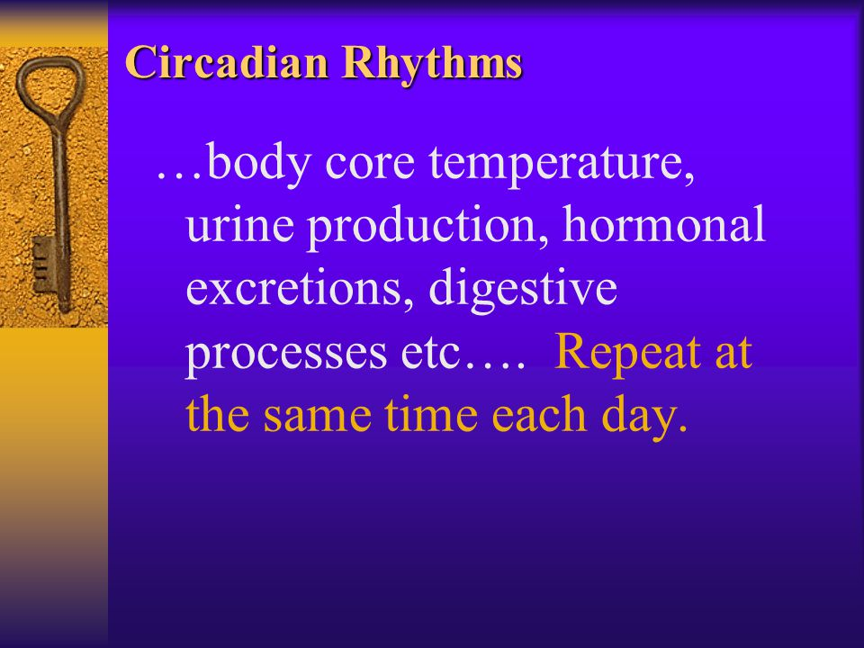 Circadian Rhythms …body core temperature, urine production, hormonal excretions, digestive processes etc….