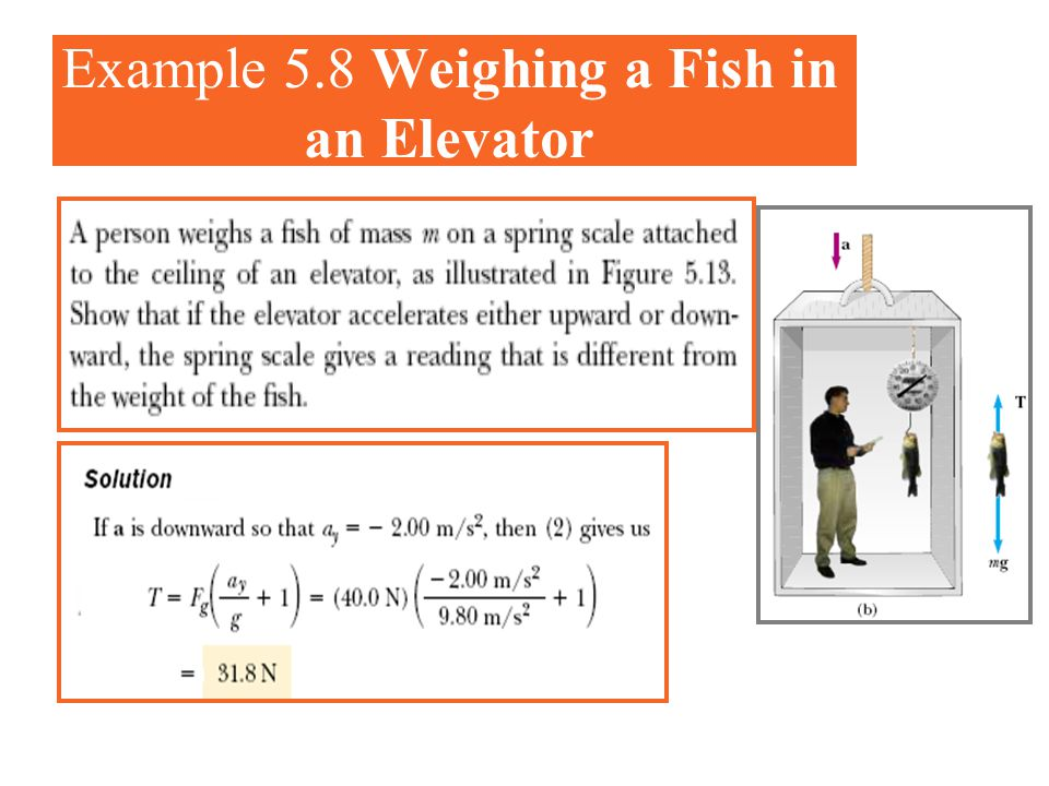 Example 5.8 Weighing a Fish in an Elevator