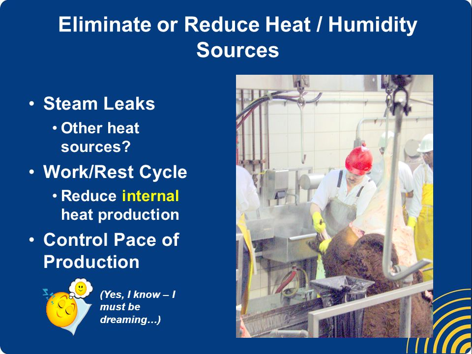 Eliminate or Reduce Heat / Humidity Sources Steam Leaks Other heat sources.