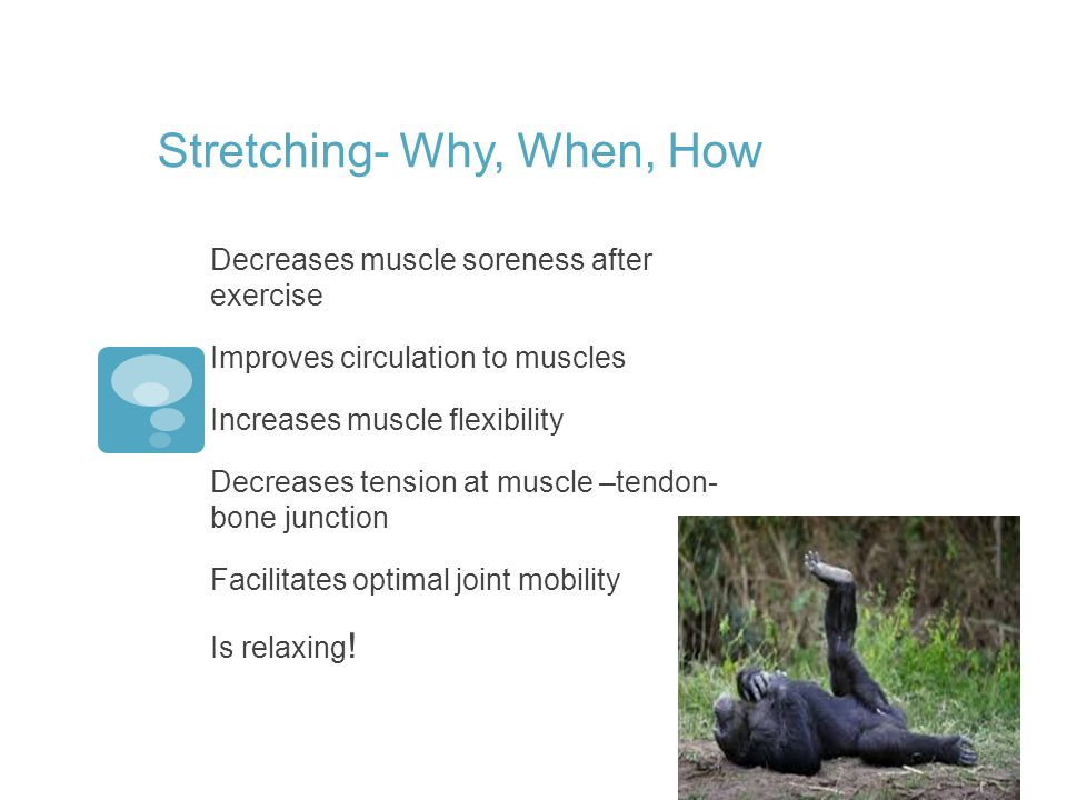 Stretching- Why, When, How Decreases muscle soreness after exercise Improves circulation to muscles Increases muscle flexibility Decreases tension at muscle –tendon- bone junction Facilitates optimal joint mobility Is relaxing !