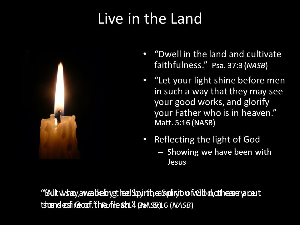 Live in the Land Dwell in the land and cultivate faithfulness.