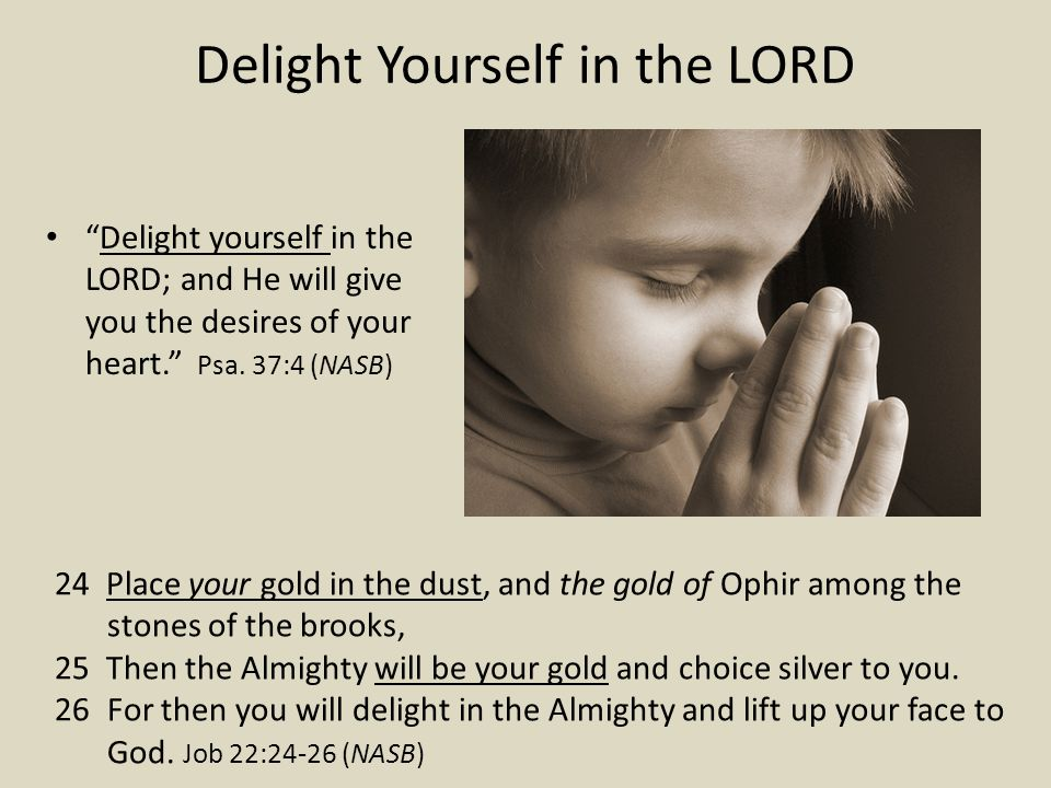 Delight Yourself in the LORD Delight yourself in the LORD; and He will give you the desires of your heart.