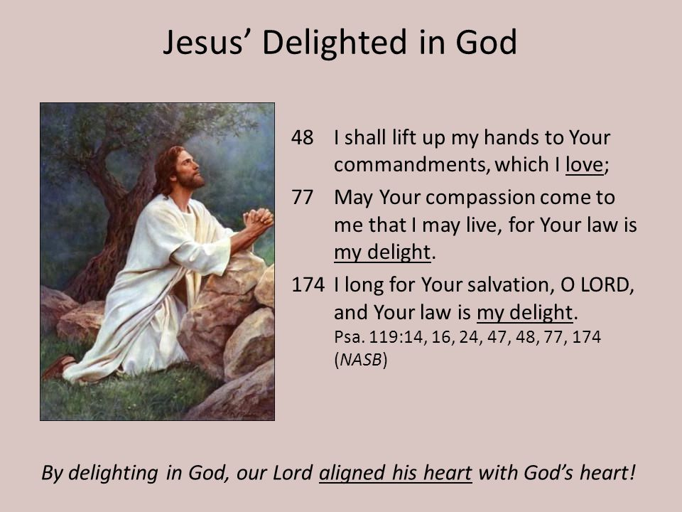Jesus Delighted in God 48I shall lift up my hands to Your commandments, which I love; 77May Your compassion come to me that I may live, for Your law is my delight.