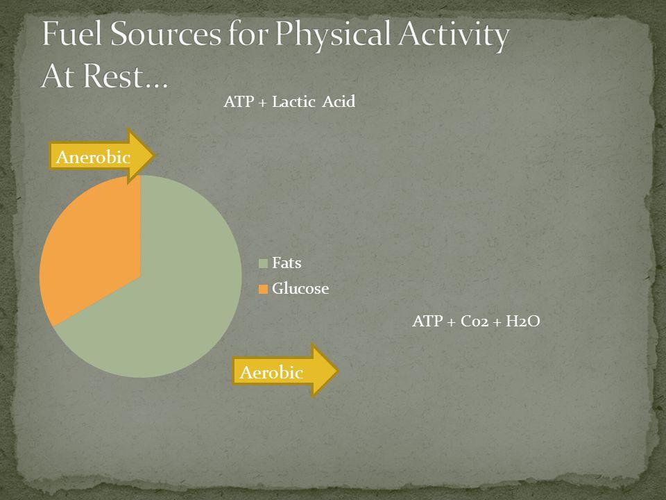 Anerobic ATP + Lactic Acid ATP + Co2 + H2O