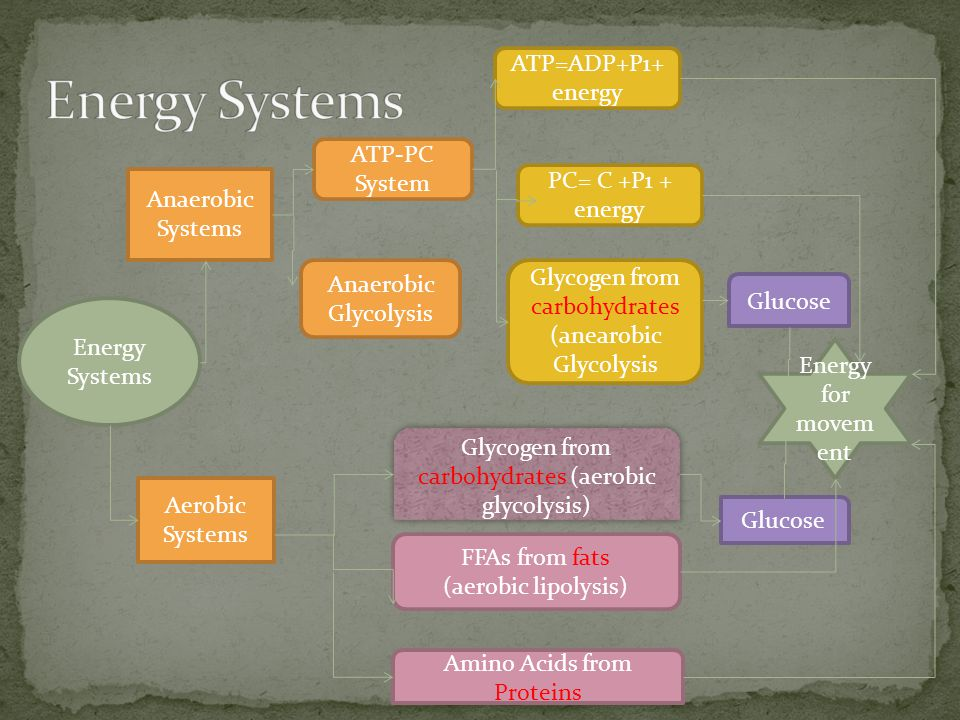 Energy Systems Anaerobic Systems Aerobic Systems ATP-PC System Anaerobic Glycolysis FFAs from fats (aerobic lipolysis) Amino Acids from Proteins Glyco