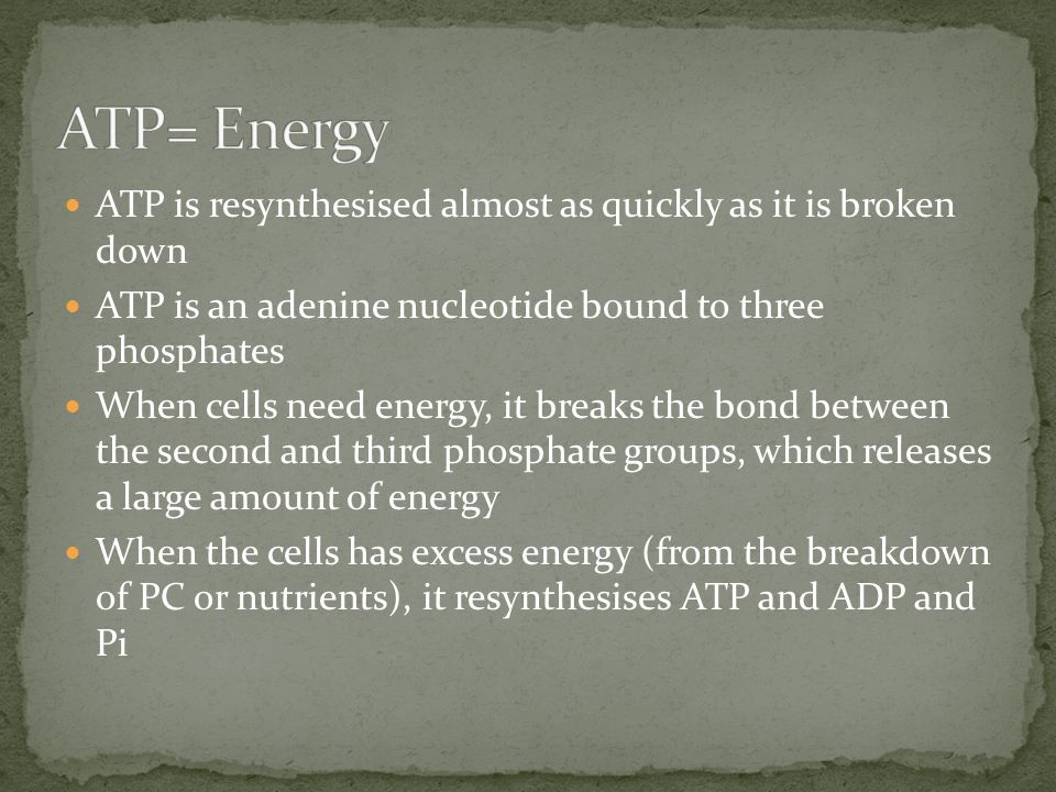 ATP is resynthesised almost as quickly as it is broken down ATP is an adenine nucleotide bound to three phosphates When cells need energy, it breaks t