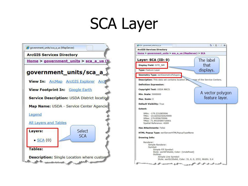 SCA Layer A vector polygon feature layer. Select SCA The label that displays.