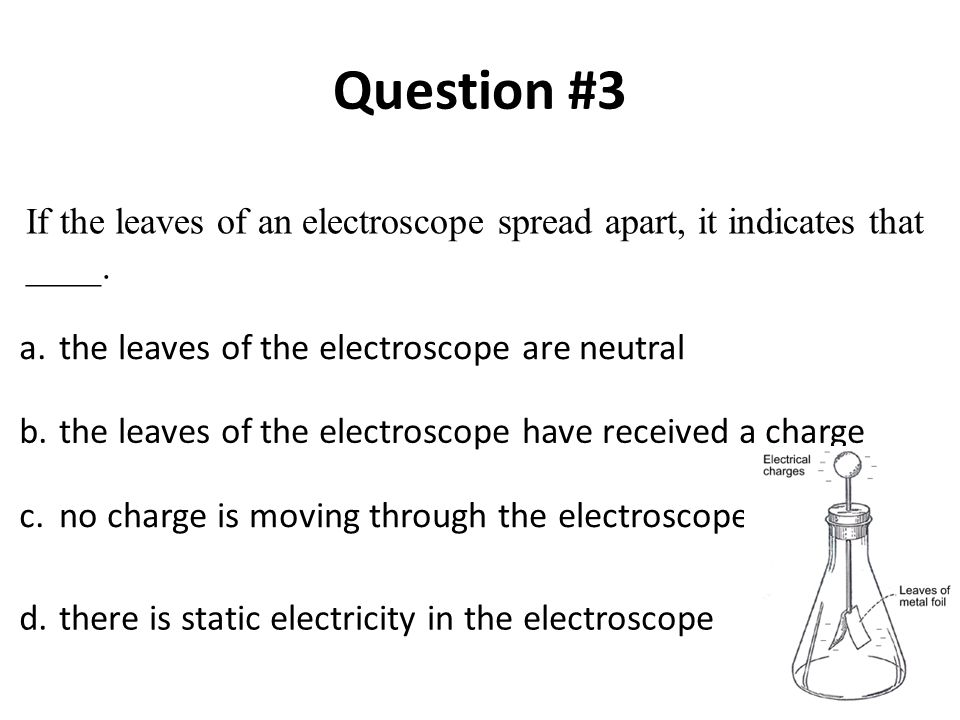a.the leaves of the electroscope are neutral b.the leaves of the electroscope have received a charge c.no charge is moving through the electroscope d.