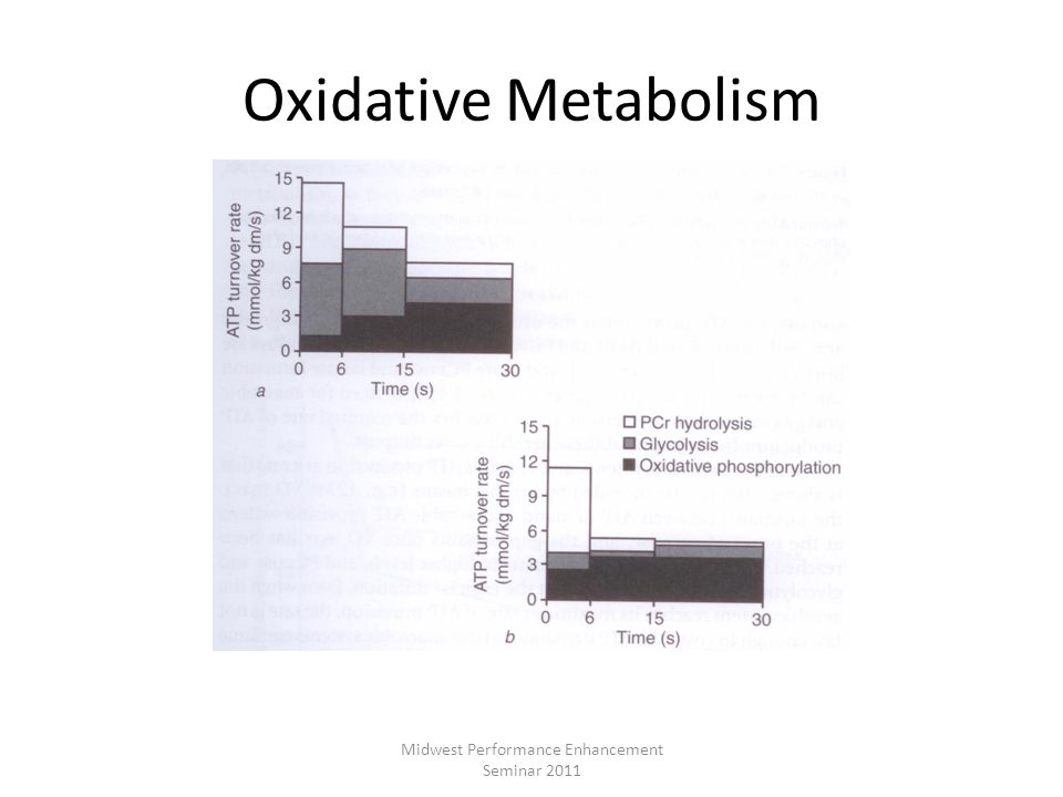 Oxidative Metabolism Midwest Performance Enhancement Seminar 2011