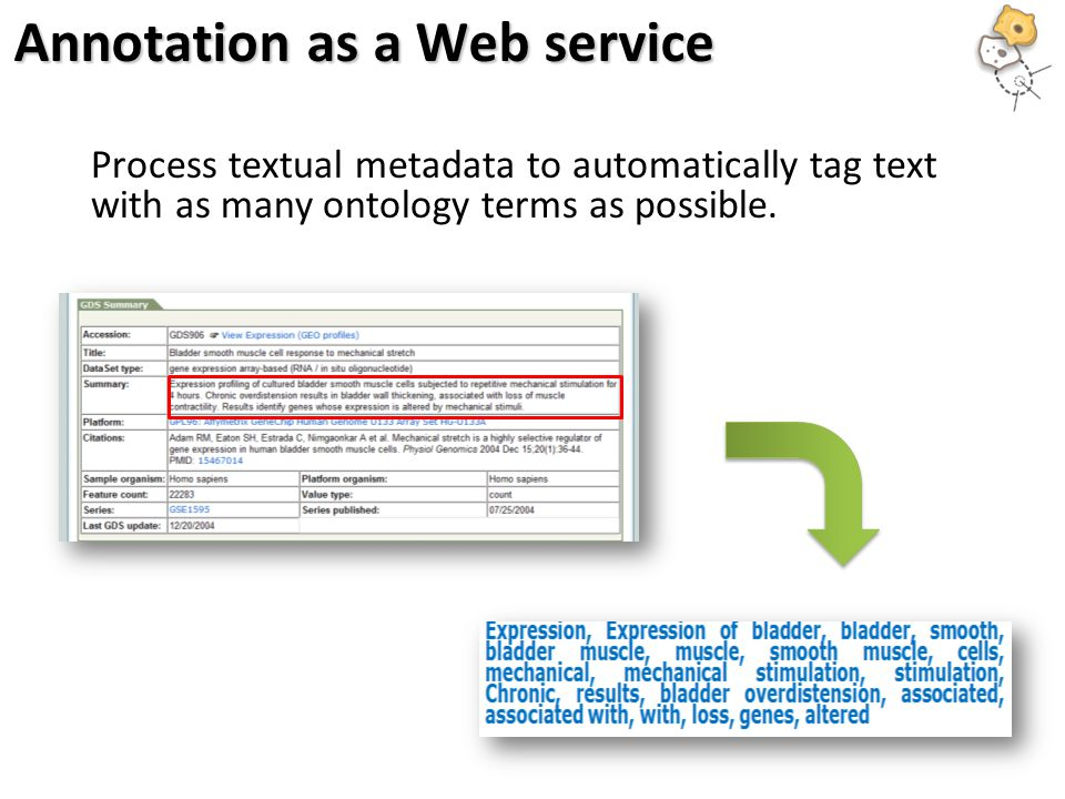 Annotation as a Web service Process textual metadata to automatically tag text with as many ontology terms as possible.