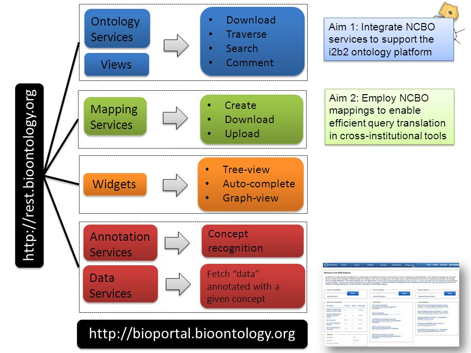 http://rest.bioontology.org Ontology Services Download Traverse Search Comment Download Traverse Search Comment Widgets Tree-view Auto-complete Graph-view Tree-view Auto-complete Graph-view Annotation Services Data Services Mapping Services Create Download Upload Create Download Upload Views Concept recognition Fetch data annotated with a given concept http://bioportal.bioontology.org Aim 1: Integrate NCBO services to support the i2b2 ontology platform Aim 2: Employ NCBO mappings to enable efficient query translation in cross-institutional tools
