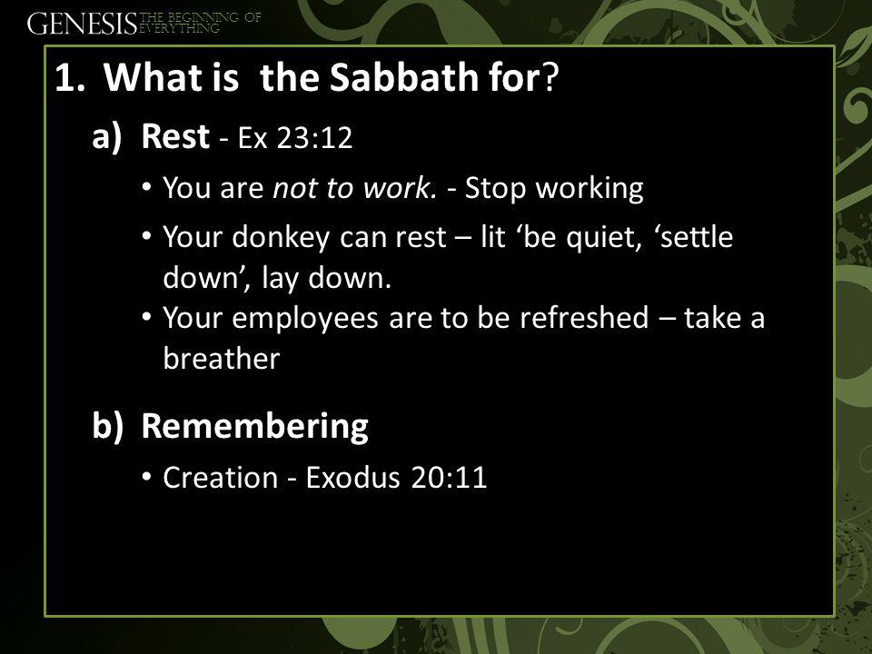 GENESIS The beginning of everything 1.What is the Sabbath for.