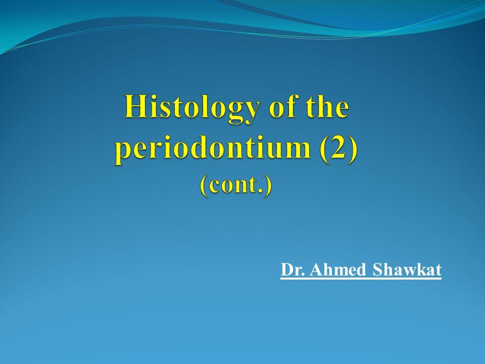 Dr. Ahmed Shawkat