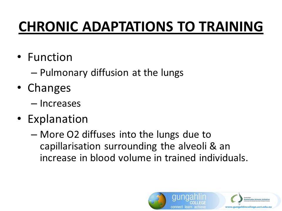 CHRONIC ADAPTATIONS TO TRAINING Function – Pulmonary diffusion at the lungs Changes – Increases Explanation – More O2 diffuses into the lungs due to c
