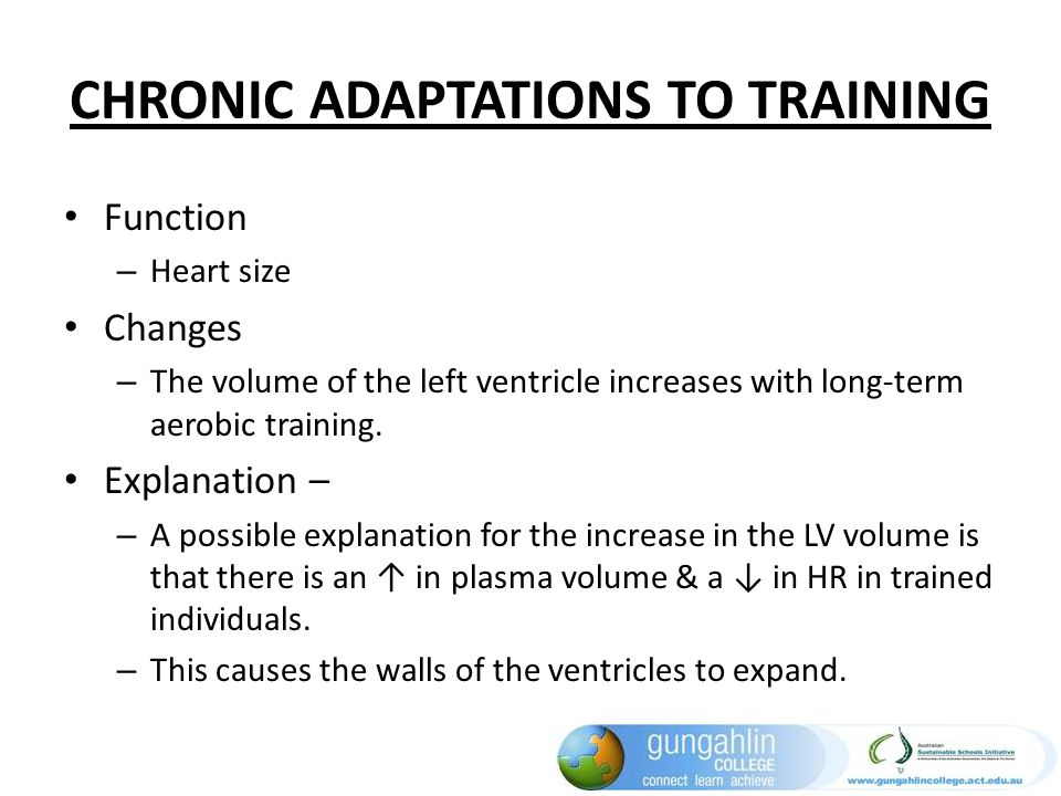 CHRONIC ADAPTATIONS TO TRAINING Function – Heart size Changes – The volume of the left ventricle increases with long-term aerobic training. Explanatio