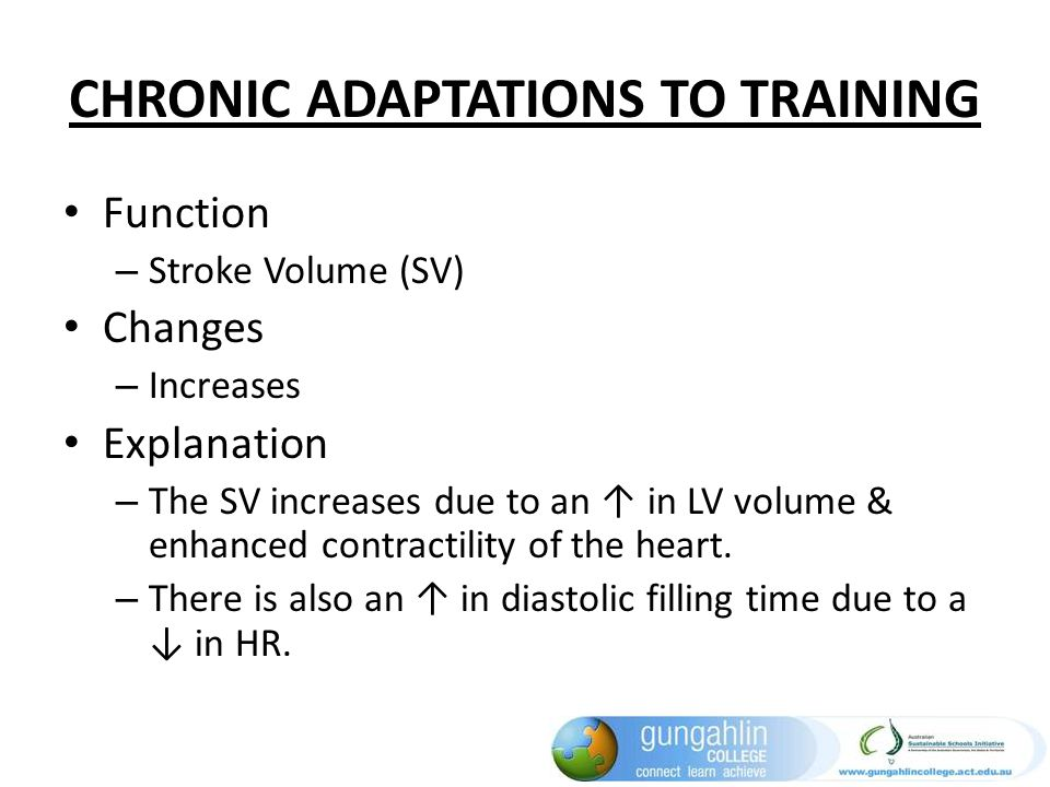 CHRONIC ADAPTATIONS TO TRAINING Function – Stroke Volume (SV) Changes – Increases Explanation – The SV increases due to an in LV volume & enhanced con