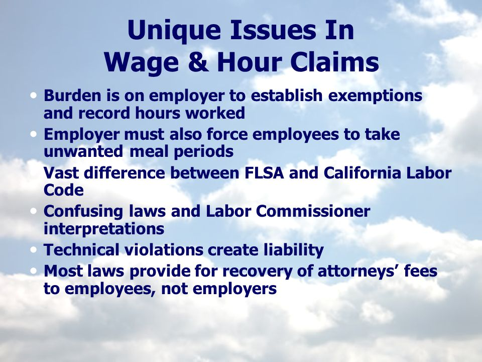 Preventative Solutions Develop timekeeping procedures Develop reimbursement policies Uniforms Mileage Tools & Equipment Consider varying evaluations, job descriptions, standards, rules and procedures by location or individuals Communicate legal requirements to employees
