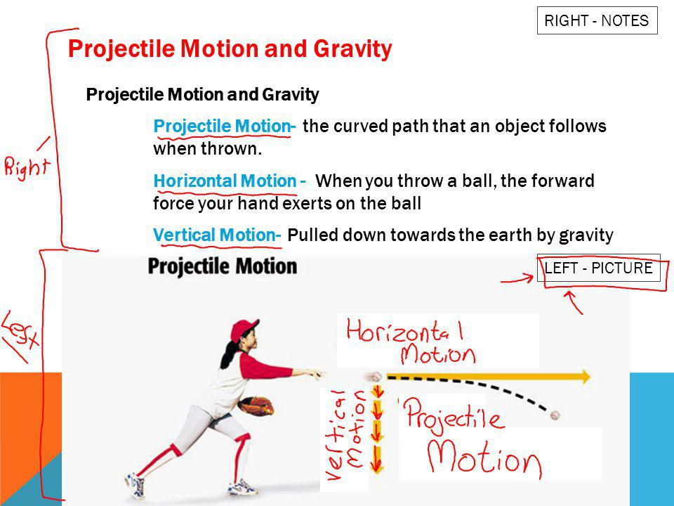 Projectile Motion and Gravity Projectile Motion- the curved path that an object follows when thrown. Horizontal Motion - When you throw a ball, the fo