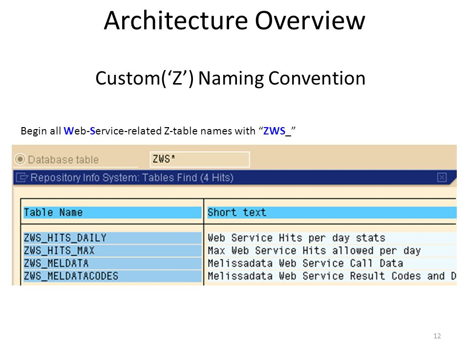 12 Custom(Z) Naming Convention Begin all Web-Service-related Z-table names with ZWS_ Architecture Overview