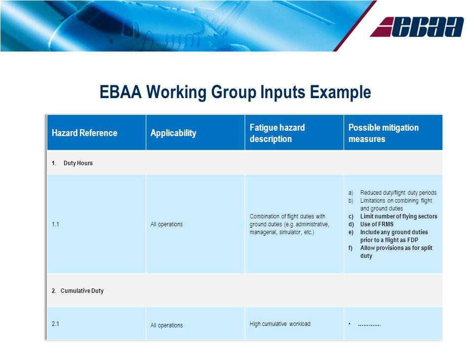 EBAA Working Group Inputs Example