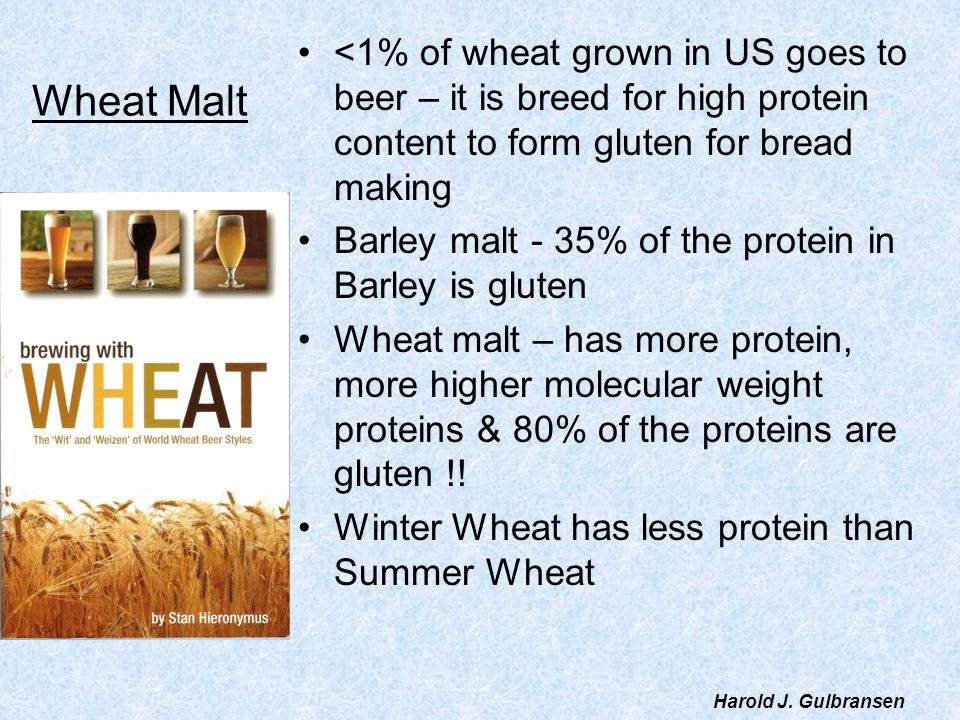 Wheat Malt <1% of wheat grown in US goes to beer – it is breed for high protein content to form gluten for bread making Barley malt - 35% of the prote