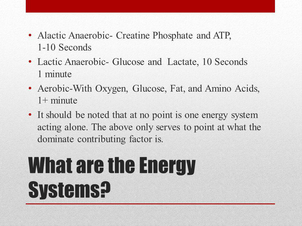 Developing the Anaerobic System for L.I.S.
