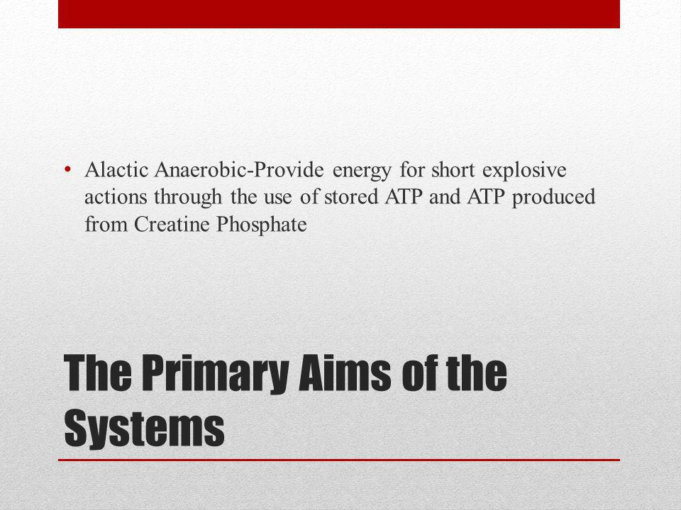 The Primary Aims of the Systems Alactic Anaerobic-Provide energy for short explosive actions through the use of stored ATP and ATP produced from Creatine Phosphate