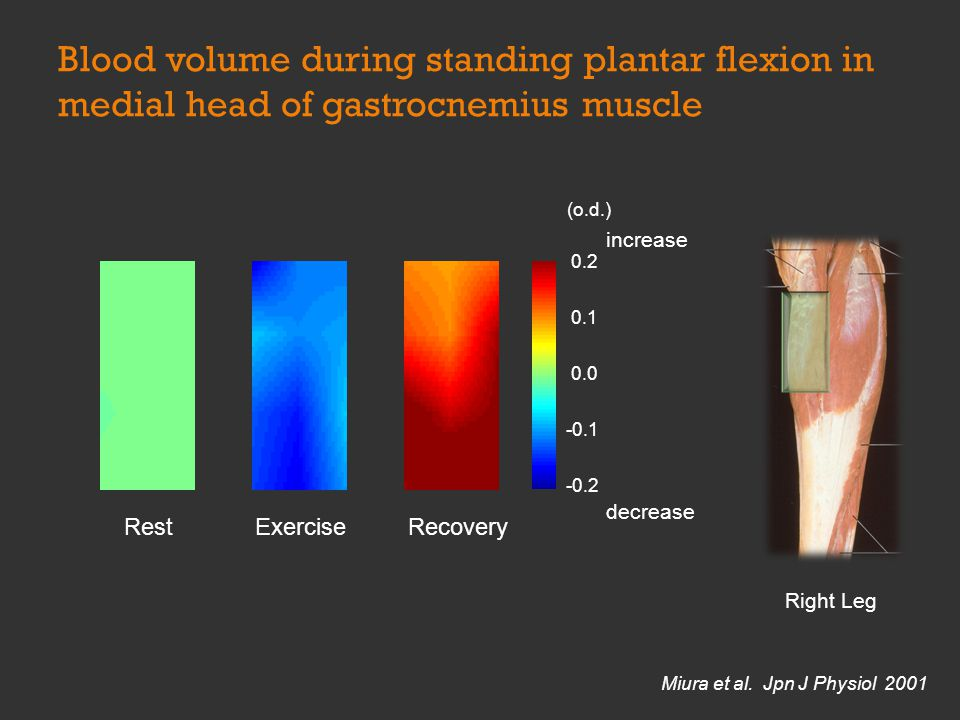 ExerciseRecovery Right Leg Rest 0.2 0.1 0.0 -0.1 -0.2 increase decrease (o.d.) Miura et al. Jpn J Physiol 2001 Blood volume during standing plantar fl