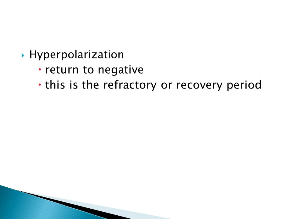 Hyperpolarization return to negative this is the refractory or recovery period