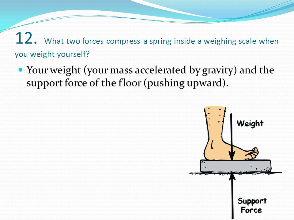 12. What two forces compress a spring inside a weighing scale when you weight yourself? Your weight (your mass accelerated by gravity) and the support