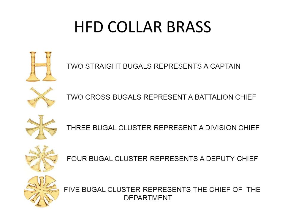 HFD COLLAR BRASS TWO STRAIGHT BUGALS REPRESENTS A CAPTAIN TWO CROSS BUGALS REPRESENT A BATTALION CHIEF THREE BUGAL CLUSTER REPRESENT A DIVISION CHIEF