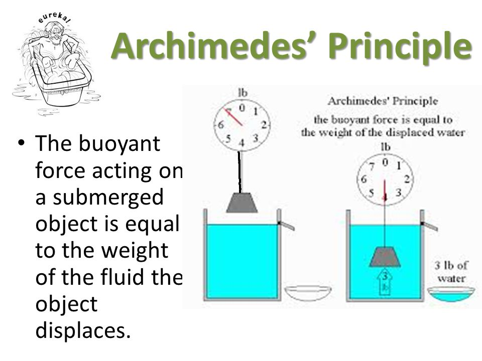 Archimedes Principle The buoyant force acting on a submerged object is equal to the weight of the fluid the object displaces.