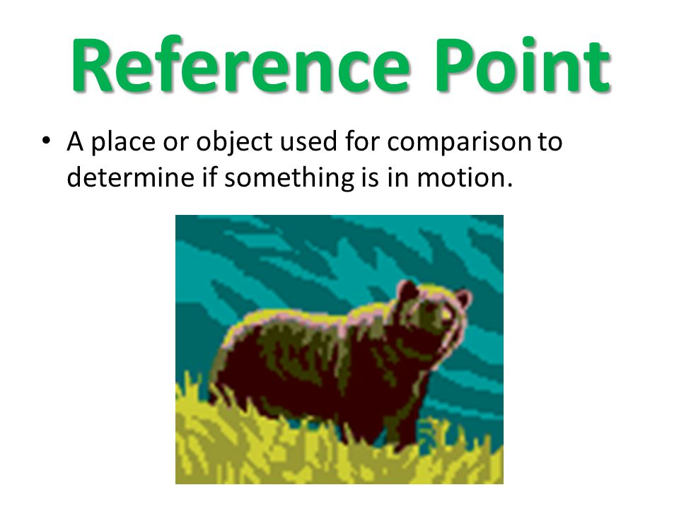 Reference Point A place or object used for comparison to determine if something is in motion.