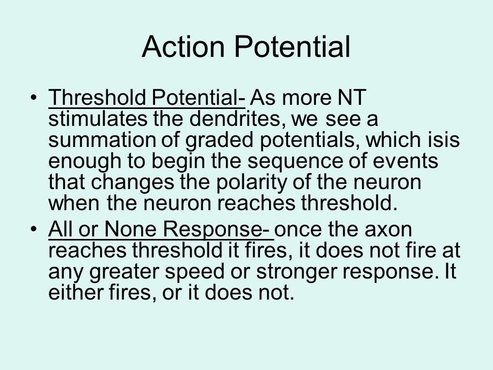 Action Potential Threshold Potential- As more NT stimulates the dendrites, we see a summation of graded potentials, which isis enough to begin the seq
