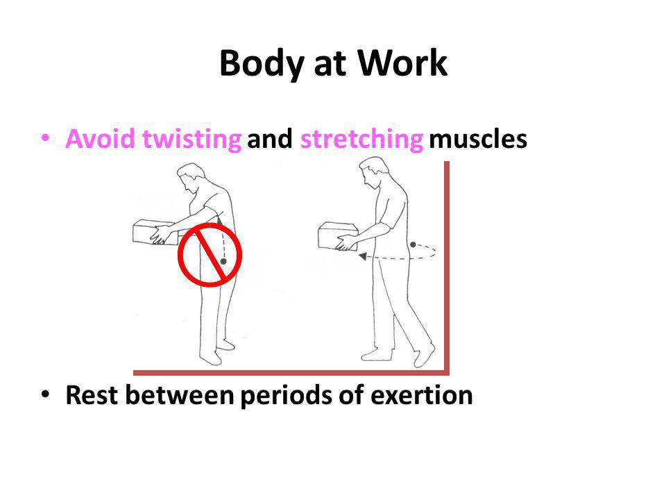Body at Work Avoid twisting and stretching muscles Rest between periods of exertion