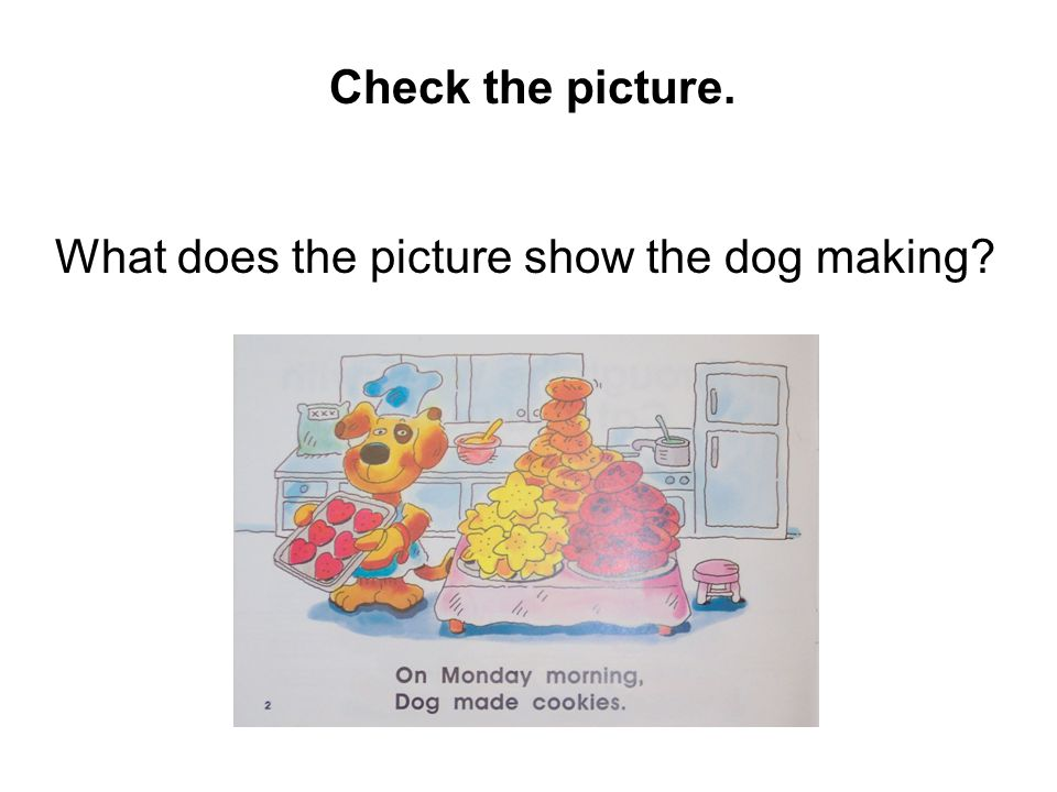 Check the picture. What does the picture show the dog making?