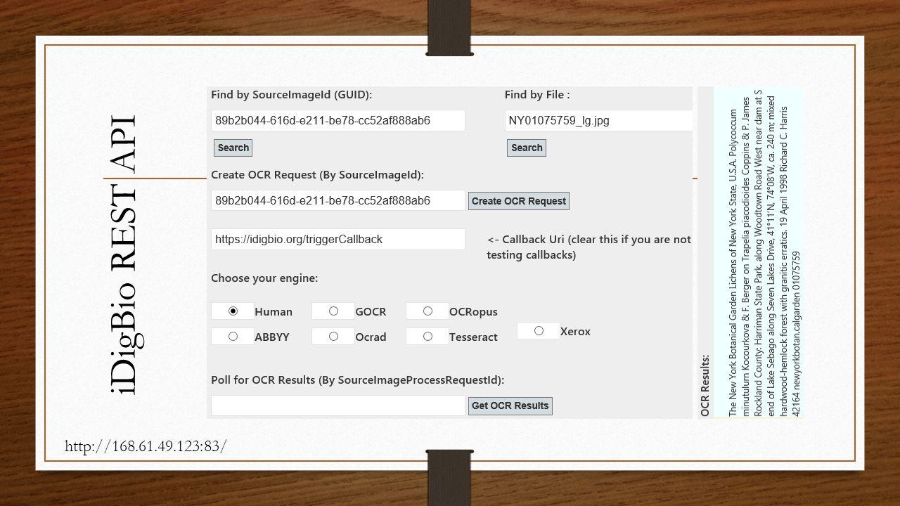 iDigBio REST API http://168.61.49.123:83/