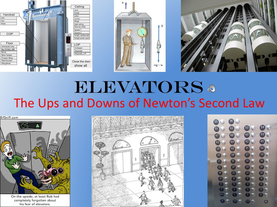 What will the scale read if the elevator is moving at a constant velocity.