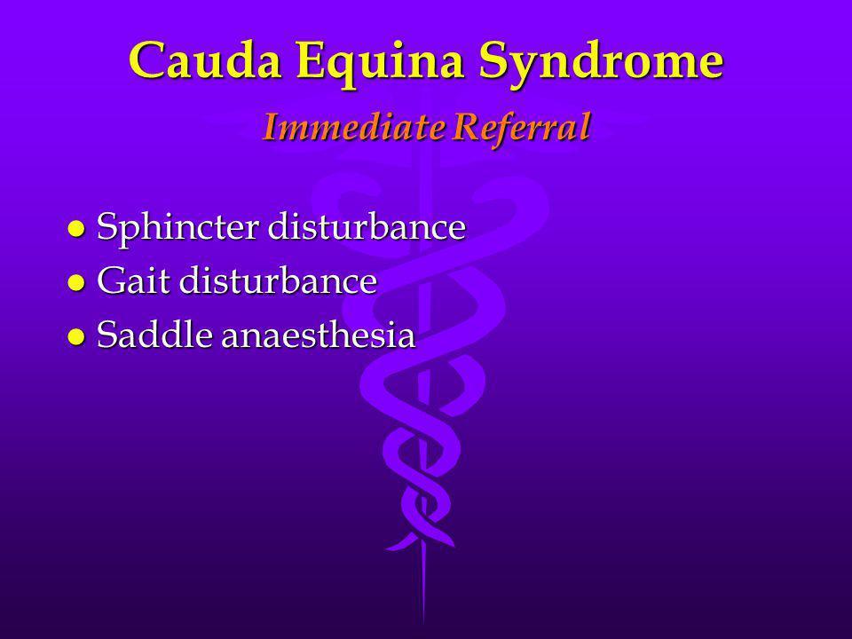 Cauda Equina Syndrome Immediate Referral l Sphincter disturbance l Gait disturbance l Saddle anaesthesia
