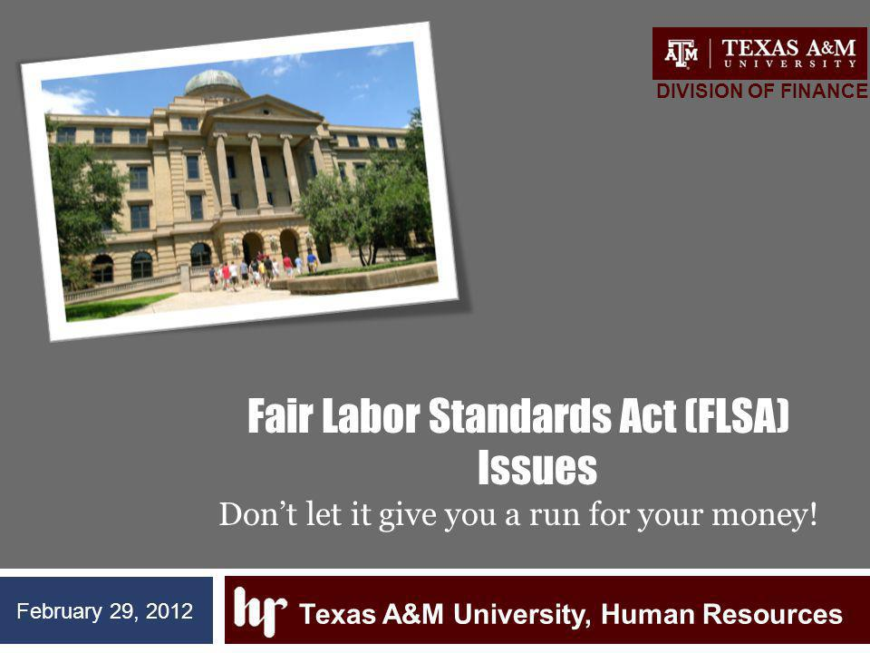 Fair Labor Standards Act (FLSA) Issues Dont let it give you a run for your money.