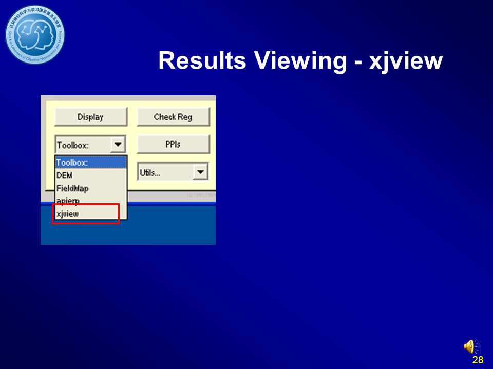 28 Results Viewing - xjview