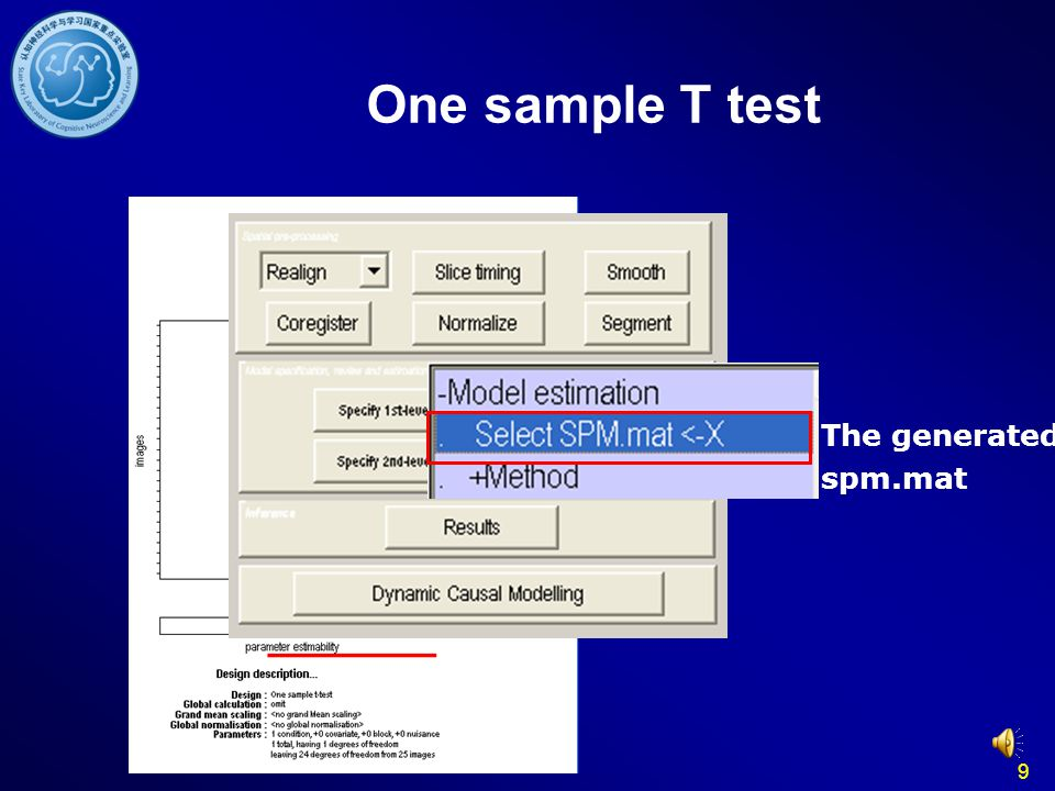 9 The generated spm.mat One sample T test